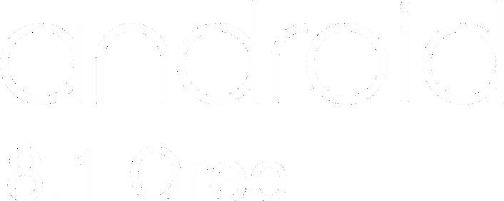 secao 2 - texto android 3